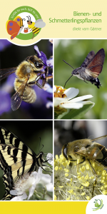 """Deckenhänger """"Bienen- und Schmetterlingspflanzen"""""""