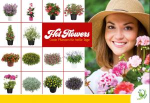 """Broschüre """"Hot Flowers - Coole Pflanzen für heiße Tage"""""""