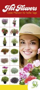 """Deckenbanner """"Hot Flowers - Coole Pflanzen für heiße Tage"""""""
